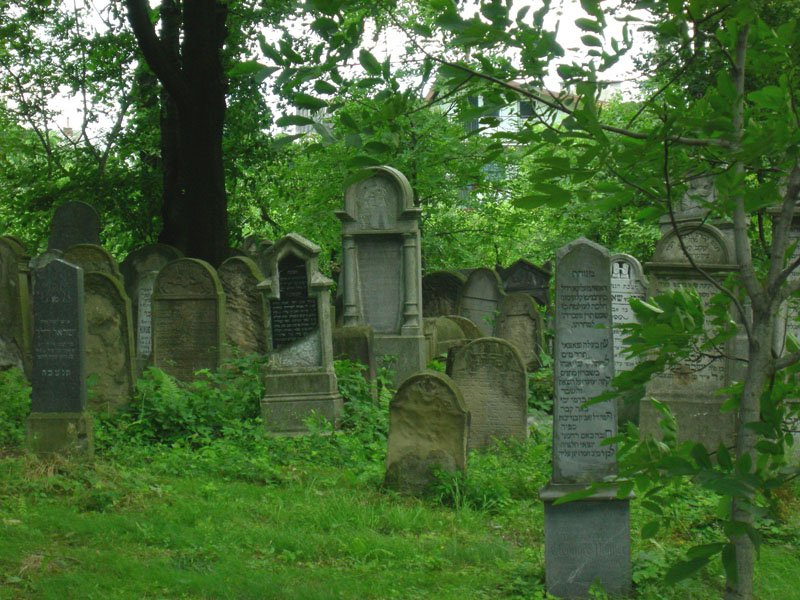 Wikipedia, Flickr images uploaded by Flickr upload bot, Jewish cemetery in Bochnia