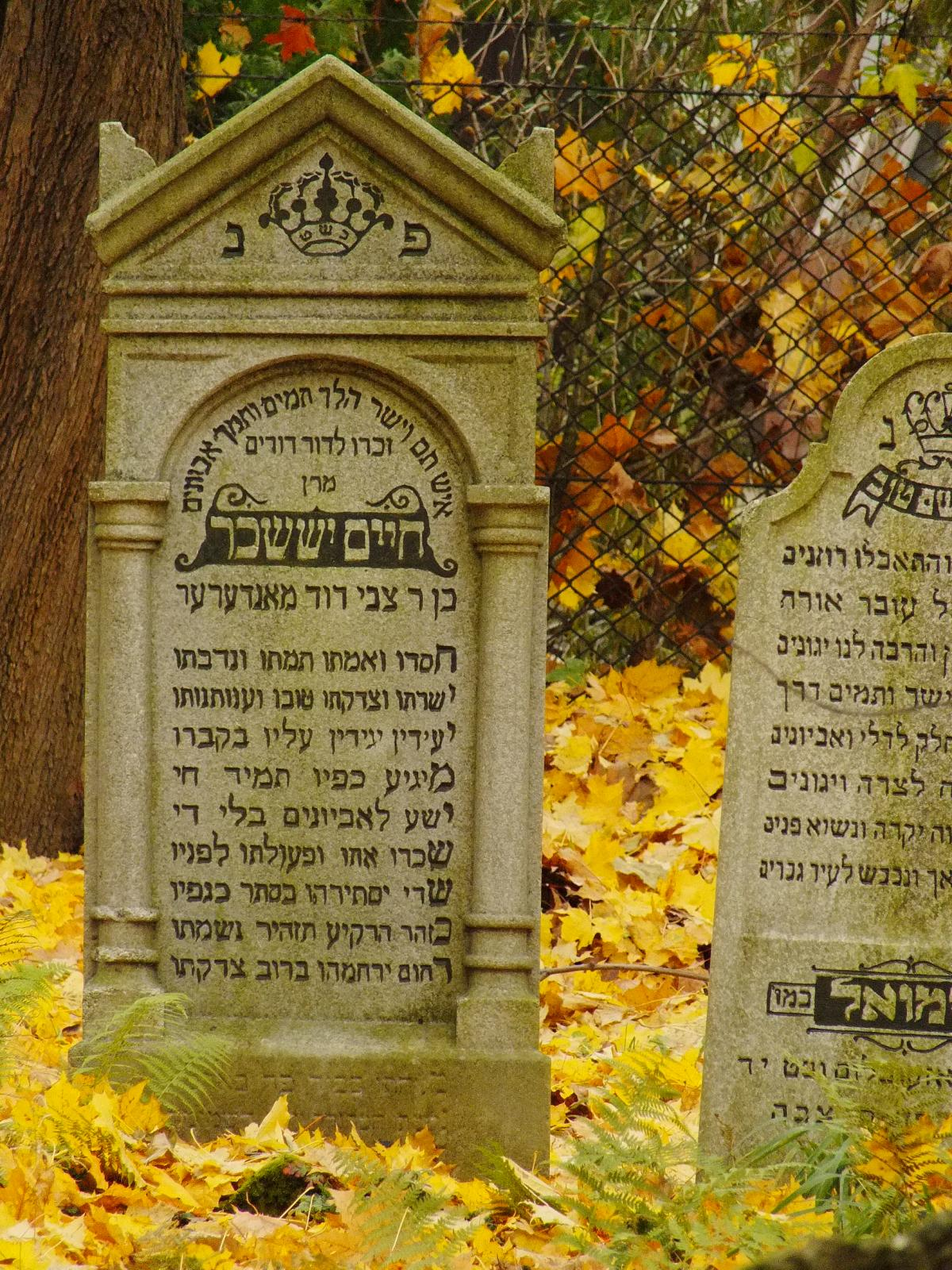 Wikipedia, Cultural heritage monuments in Poland with known IDs, Jewish cemetery in Bochnia, Self-pu