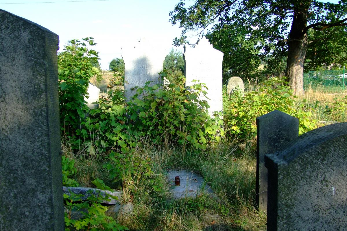 Wikipedia, Jewish cemetery in Pyskowice, Self-published work