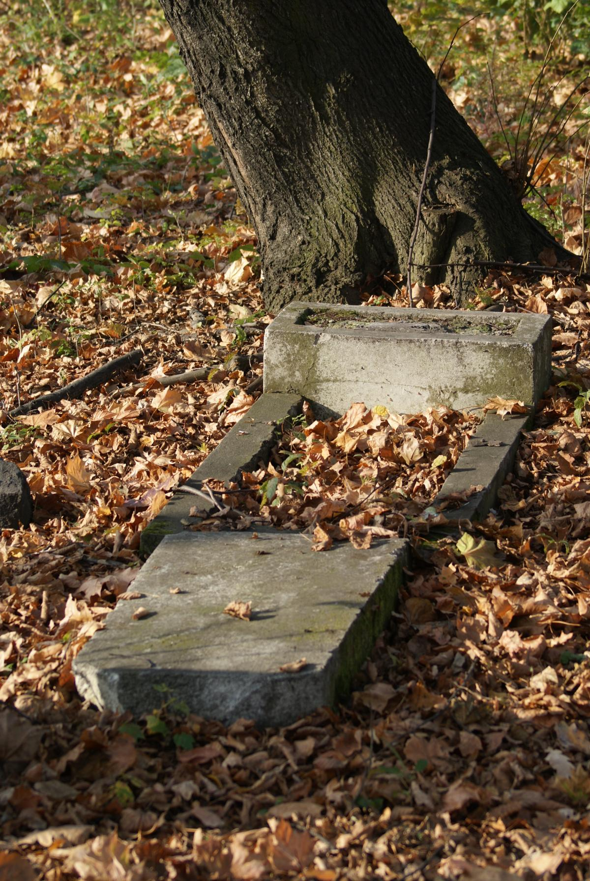 Wikipedia, Jewish cemetery in Czechowice-Dziedzice, Self-published work