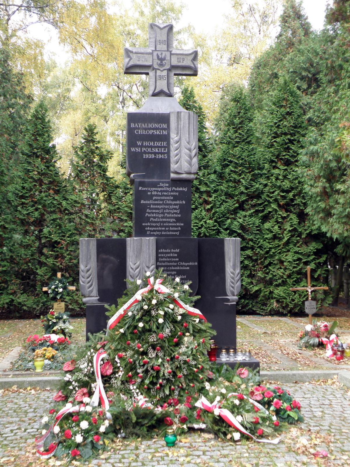 Wikipedia, Military Cemetery in Warsaw, Self-published work